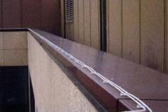 Taubenabwehr mit Elektroverfahren - Elektrosyscolex
