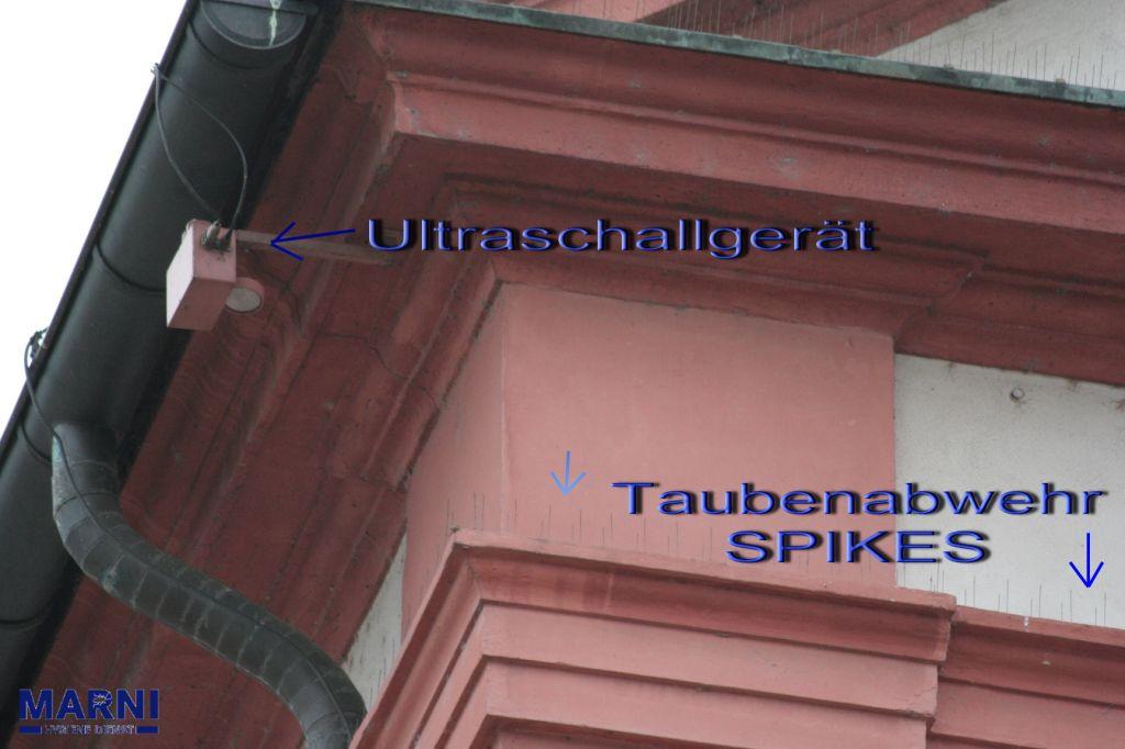 Taubenabwehr mit Schalldruck